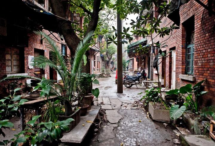Blick  in  Gasse mit Backsteinhäusern, im Vordergrund Pflanzen
